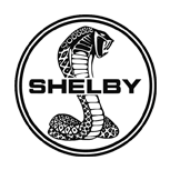 Shelby Key Replacement